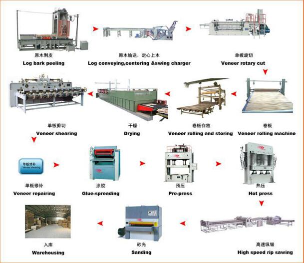 Automatic Veneer Plywood Production Line/ Veneer Rotary Plywood Machinery