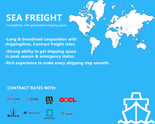 Professional Sea Shipping Service Xiamen to UK