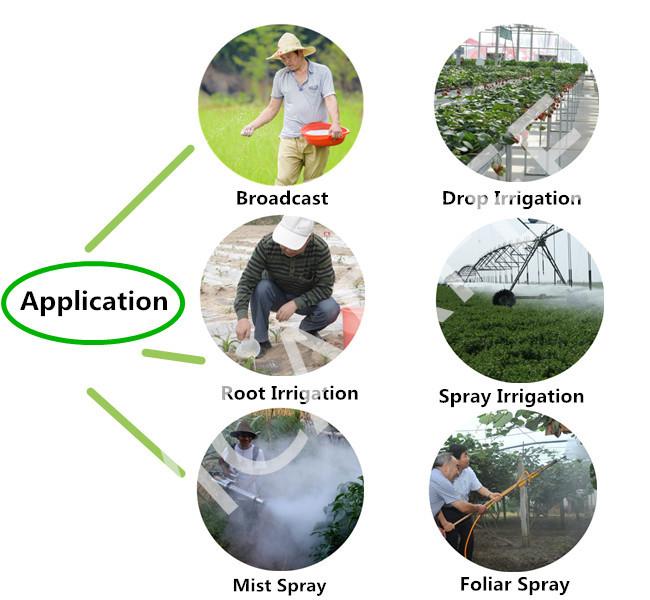 High Phosphorus Formula 10-30-20+Te NPK Water Soluble Fertilizer