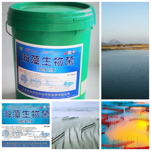 bio water treatment agent for fishing