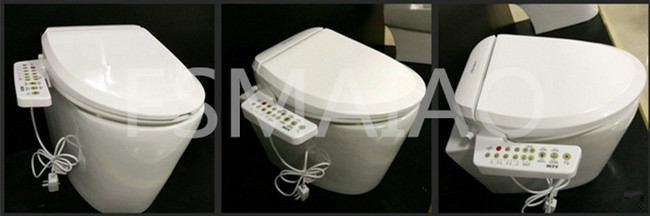 Sanitary Wares Automatic Intelligent Heated Toilet Seat (V510)