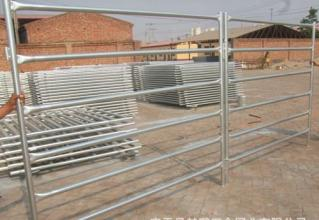 China Anping Portable Horse Panels