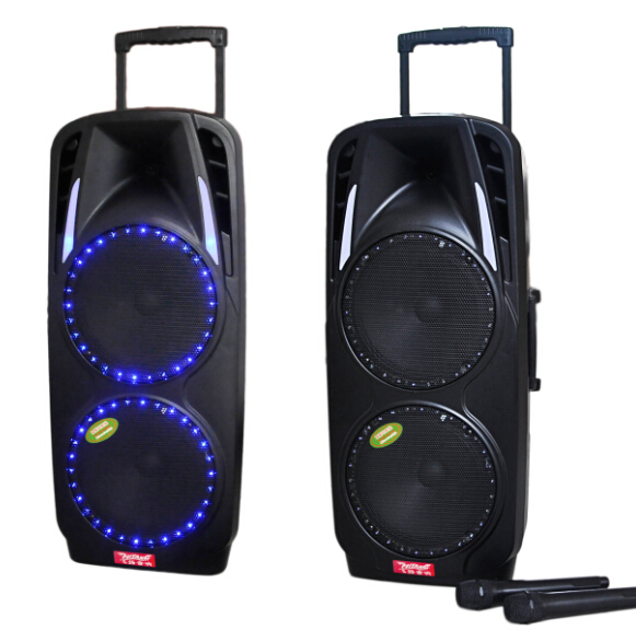 Double 10'' Portable PA System with Rechargeable Battery & Wireless VHF Handheld Microphone F73