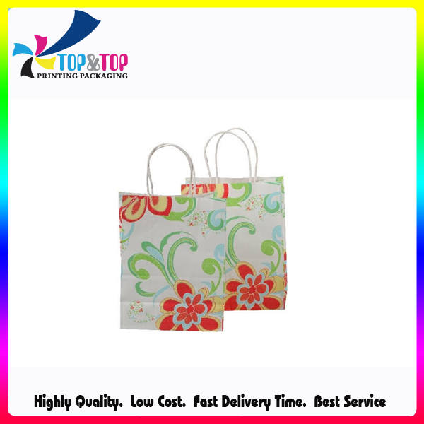 China New Style OEM Fashion Paper Bag