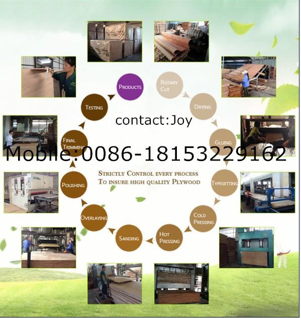 Okoume/Bintangor/Oak/Teak/Birch Commercial Plywood