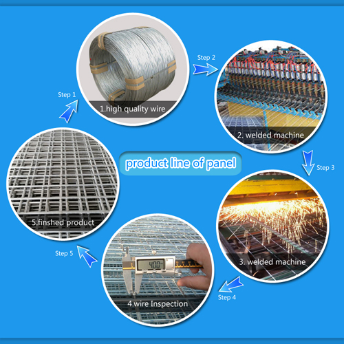 China 10 Gauge Galvanized Welded Wire Mesh