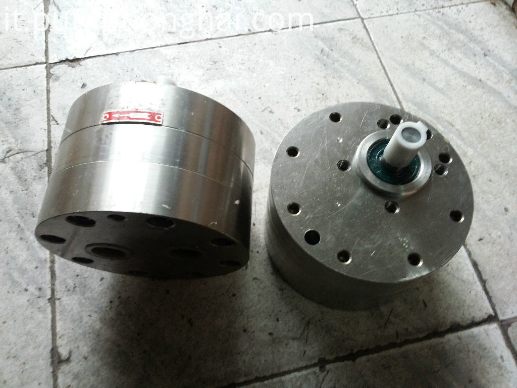 Stainless steel material mini gear pump