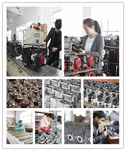 2000W 6.5HP Engine Electric Power Petrol Generator (set)