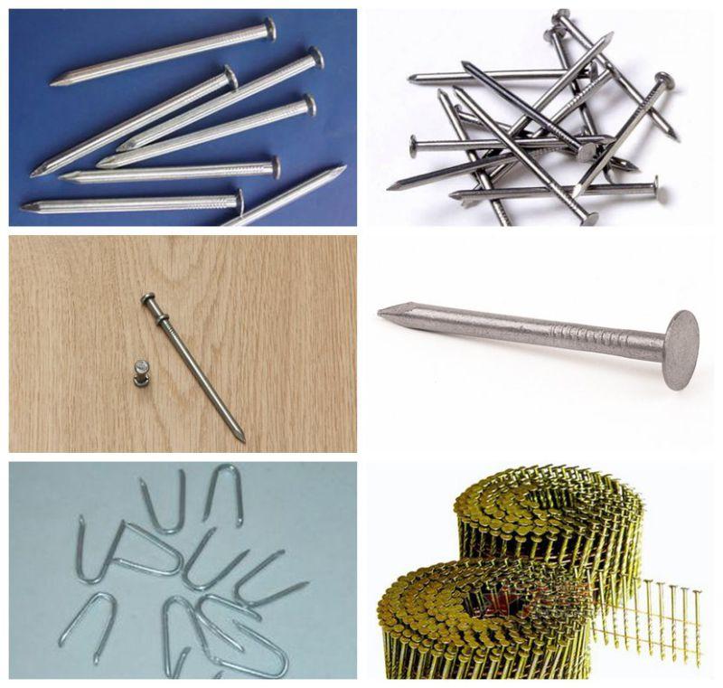 common nail iron nail factory for construction 1