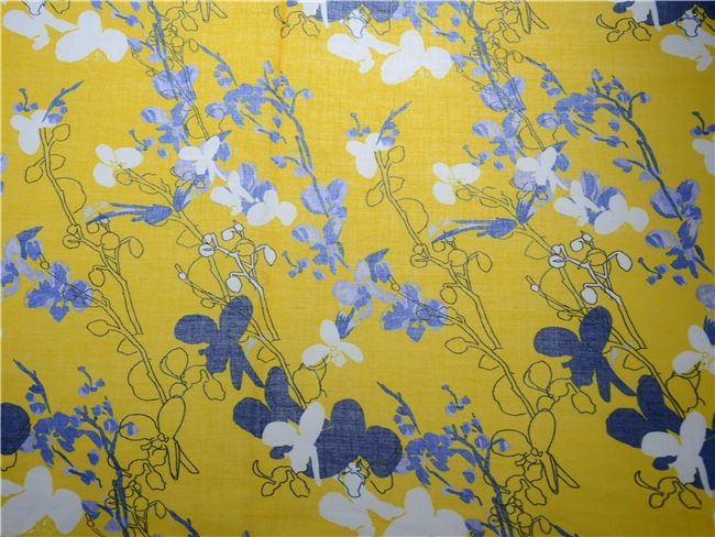High Quality Custom Digital Printing Ramie Cotton Fabric (DSC-4120)