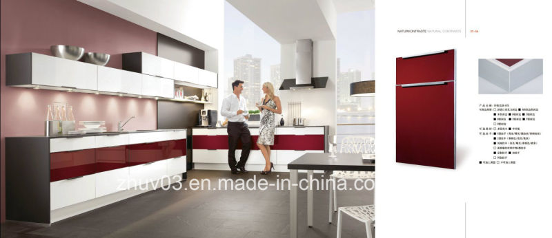 2017 New Super Anti Scartch Acrylic Doors for Kitchen Furniture (kitchen cabinets)