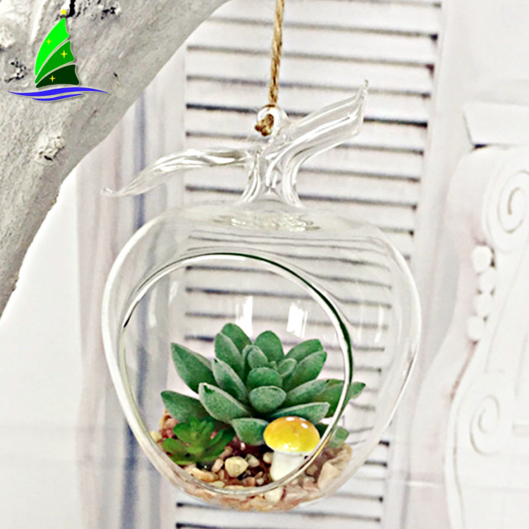 Hanging Glass Terrarium Vase