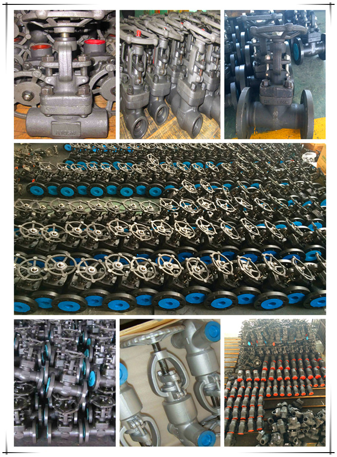 Forged Steel Thread End Pressure Seal Globe Valve