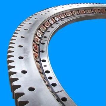 Large Diameter Slewing Bearing for Crane