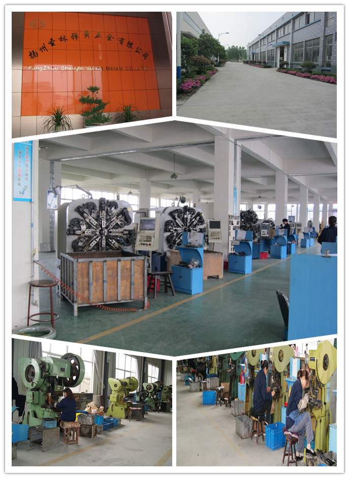 High Quality Wave Spring for Industry / Manufacturer