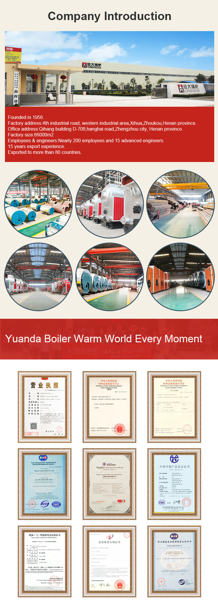 Industrial Automatically Hot Oil Boiler Gas Fired Thermal Oil Heater/Boiler