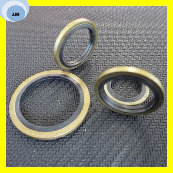 Glyd Ring Seal slipper Seal Bsf/Bsd Seal