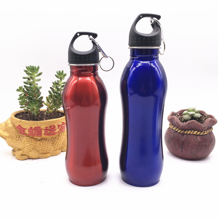 750ml Stainless Steel Outdoor Camping Sports Drink Water Bottles with Carabiner