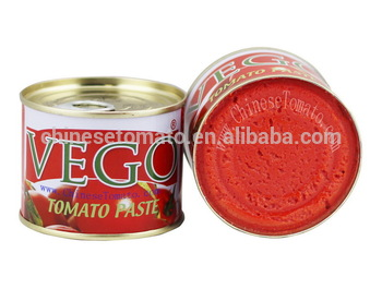 High Quality 70g Tomato Paste with Low Price