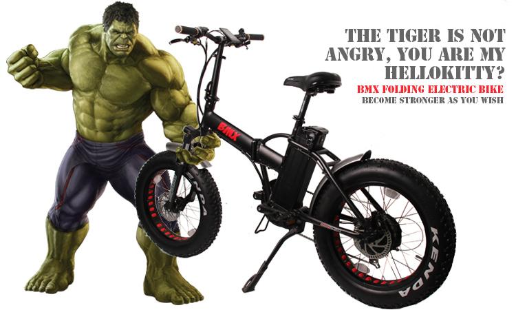 Fantas BMX 36V250W 20inches Fat Tyre E-Bike