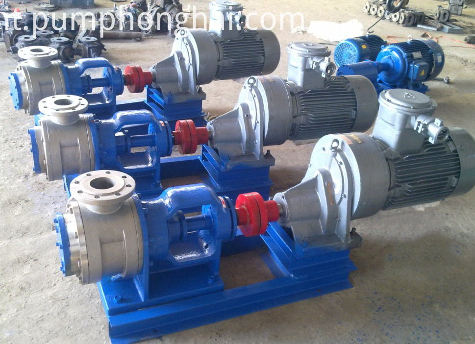 stainless steel material rotor pump: