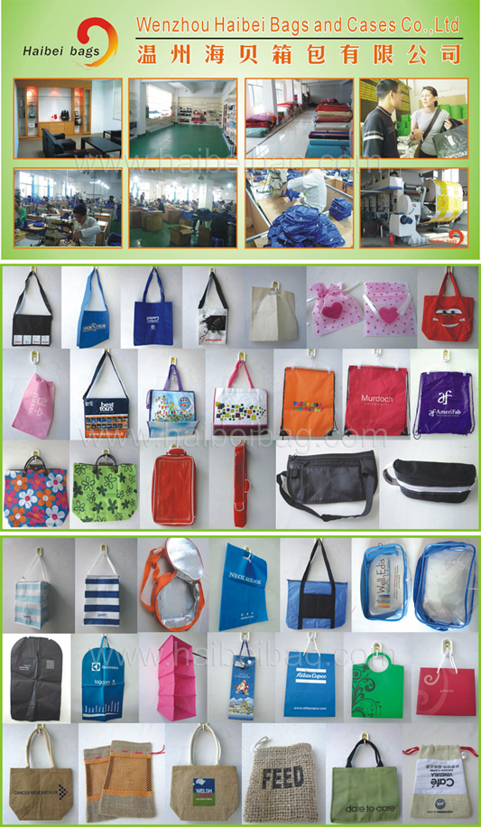 Paper Shopping Bag with Die Cut Handle/Gift Bag (HBPB-14)