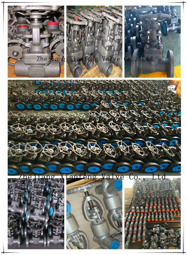 ANSI Forged Carbon Steel A105 Thread End NPT Globe Valve