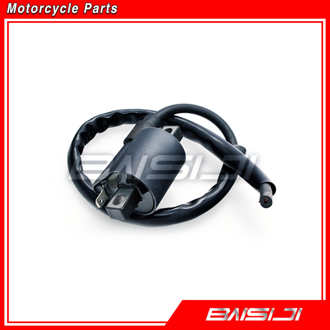 Baisiji Motorcycle Parts Motorcycle Ignition Coil for Cg125
