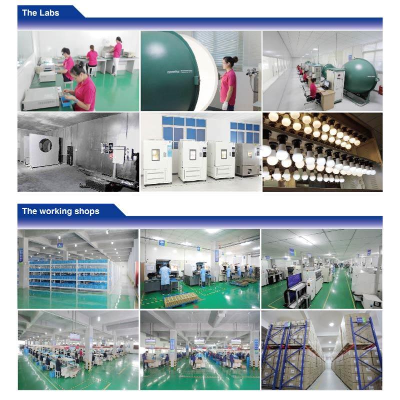10W/20W/30W/50W/100W/200W LED Working Light High Power