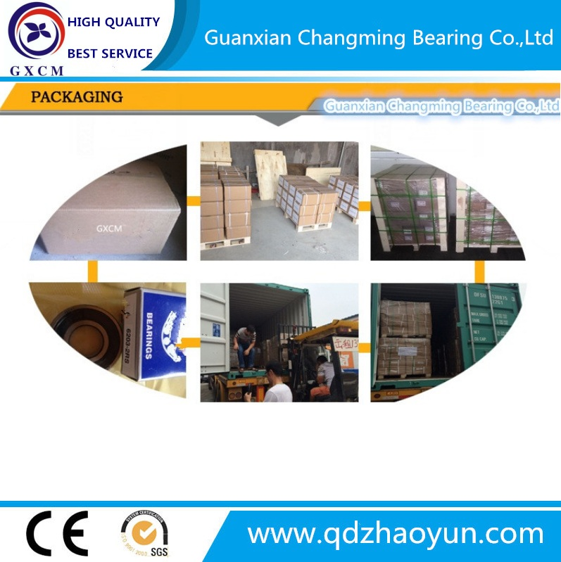 Good Price Deep Groove Ball Bearing 6000 6200 6300 6400, All Types of Bearings Made in China with Certificate SGS