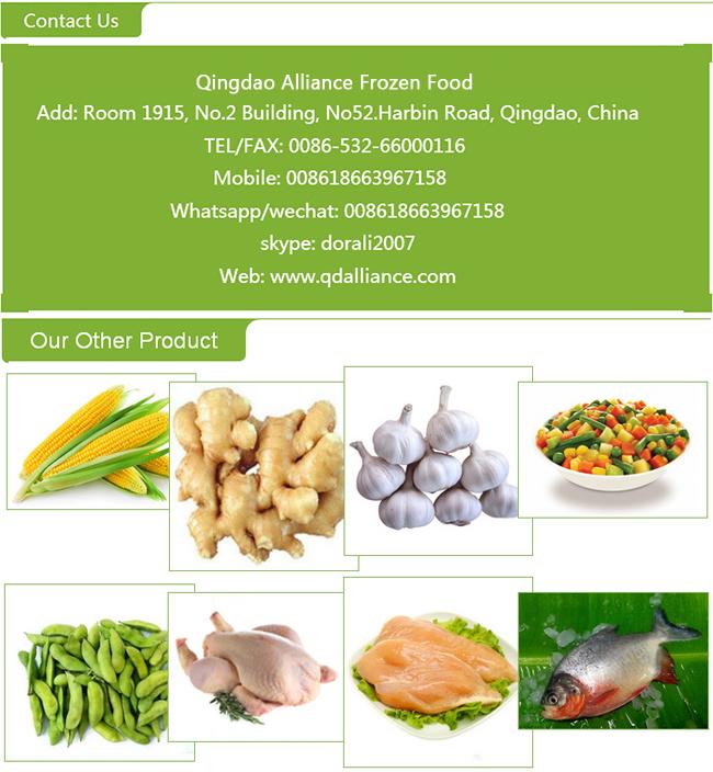 Frozen Organic Garlic Puree with Good Price
