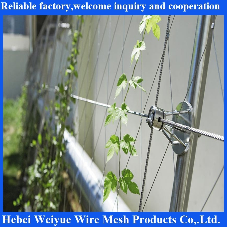 Stainless Steel Flexible Protective Net