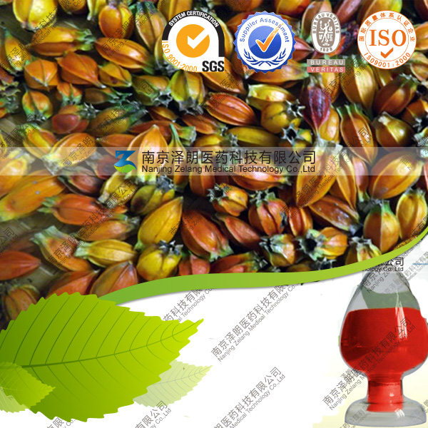 Natural Gardenia Red Pigment Cosmetic Pigment Suppliers