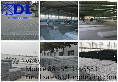 Anping High Quality PVC Coated Gabion Wire Mesh/Gabion Box