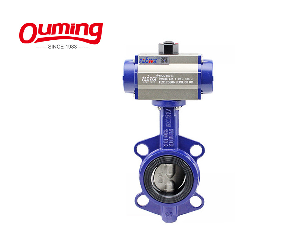 Dn100 Lt Lug Type Manual Gearbox Water Butterfly Valve
