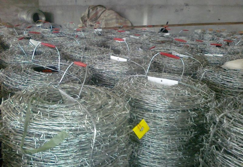 Hot-Dipped Galvanized Razor Barbed Wire/Barbed Wire for Fence