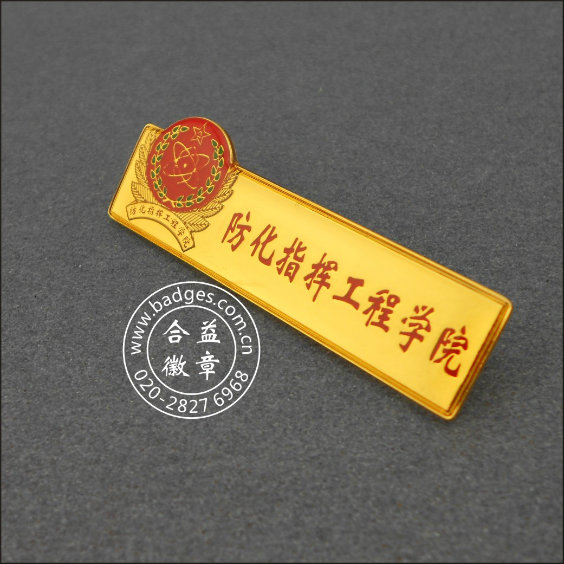 Students' Association Lapel Pin, Custom Badge (GZHY-LP-026)