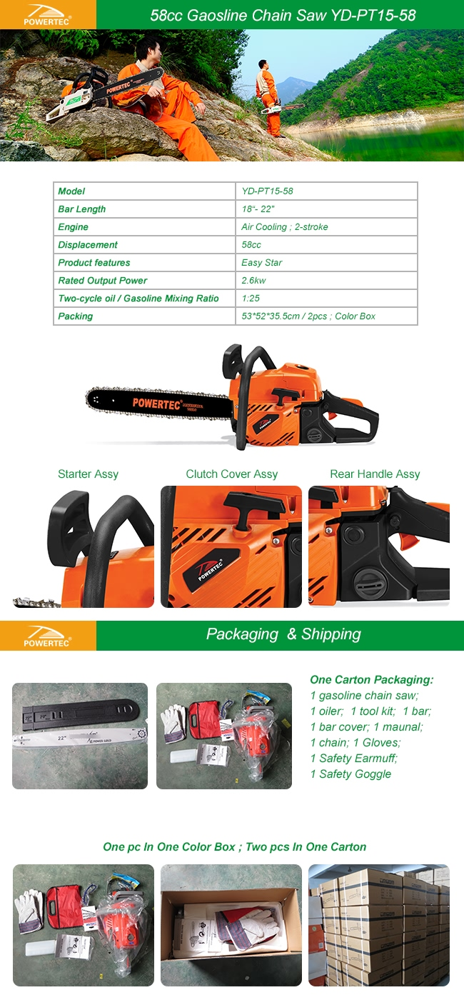 Powertec 58cc Gasoline Chain Saw
