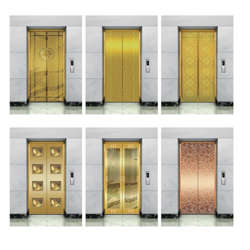 Sum Passenger Elevator with Good Quality Hot Sail Competitive