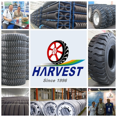 Havstone Brand Bias off-The-Road Tyres for Mining