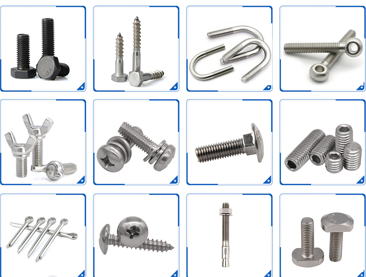 Stainless steel house clamp