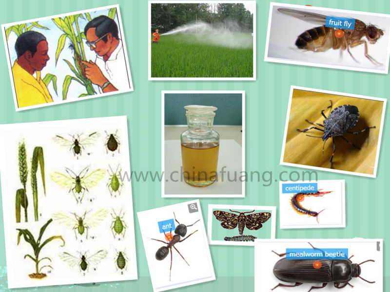 Insecticide Pesticide 35575-96-3 Sexual Attractant (Z) -9-Tricosene 10% Wp Azamethiphos