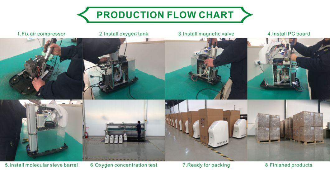 Hot Sale Low Energy Consumption 3L Mini Portable Oxygen Concentrator