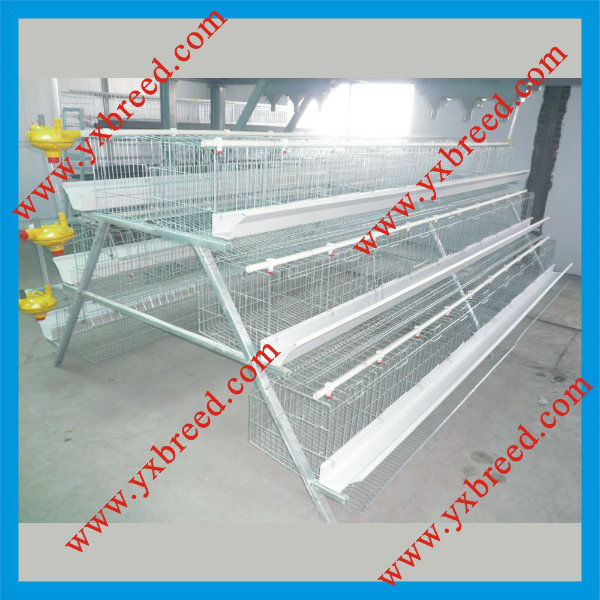 Best Selling and Good Price Lay Egg Chicken Cage