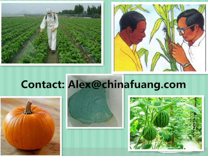Agrochemical Agricultural Chemicals Bactericide Germicide Fungicide 1332-40-7 Copper Oxychloride