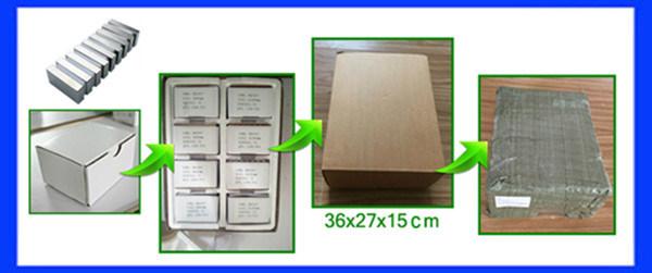 Customized Size Irregular Shape NdFeB Magnet/Motor Magnet