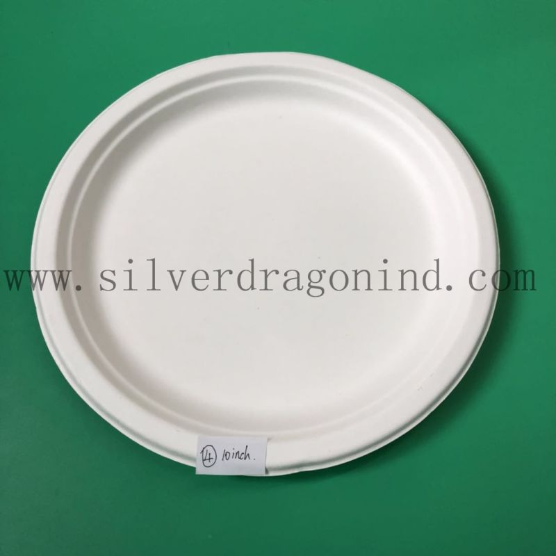 Sugarcane Pulp Material Disposable Paper Tray for Food Use