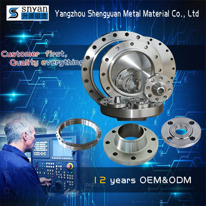 High Quality Stainless Steel Pipe Flange/Stainless Steel Flange/Pipe Fittings Flange