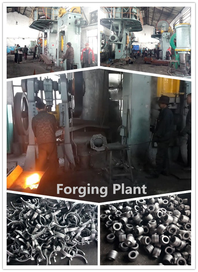 Custom Drop Forged Eyebolt for Industries