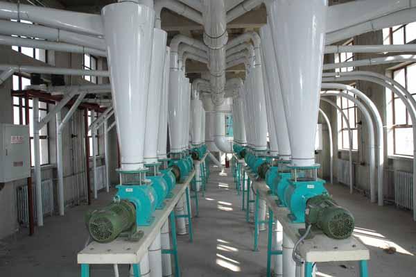 200-350tpd Wheat/Corn Flour Mill Plant